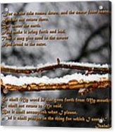 Snow From Heaven Acrylic Print