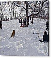 Snow Fun Acrylic Print