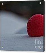 Snow Golf Acrylic Print