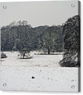Snow In Lincolnshire Acrylic Print