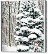 Snow In Ohio Acrylic Print