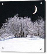 Snow In The Moonlight Acrylic Print by Giorgio Darrigo