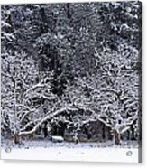 Snow In The Valley Acrylic Print