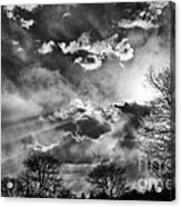 Snow Is In The Air Bw Acrylic Print
