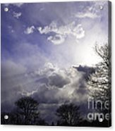 Snow Is In The Air Acrylic Print