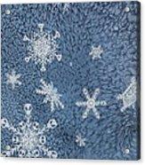 Snow Jewels Acrylic Print