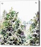 Snow Laden - Digital Effect IIi Acrylic Print
