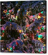 Snow On The Christmas Tree 1 Acrylic Print