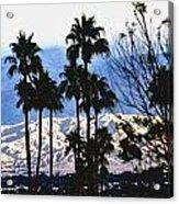 Snow Or Sun Shadows Acrylic Print