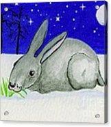 Snow Rabbit Acrylic Print