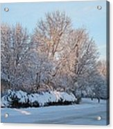 Snow Trees Sunrise 2-2-15 Acrylic Print