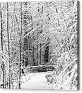 Snow Wall Acrylic Print