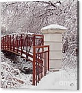 Snow Way Or No Way Acrylic Print by Irfan Gillani