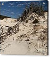 Snow White Dunes Acrylic Print by Adam Jewell
