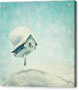 Snowbird's Home Acrylic Print by Priska Wettstein