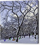Snowboarders In Central Park Acrylic Print