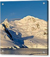 Snowcapped Mountain, Andvord Bay Acrylic Print