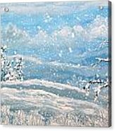Snowfall Acrylic Print by Jeanette Stewart