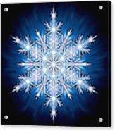 Snowflake - 2013 - A Acrylic Print