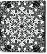 Snowflake Acrylic Print by Dan Sproul