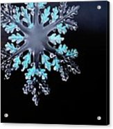 Snowflake In Window 20471 Acrylic Print
