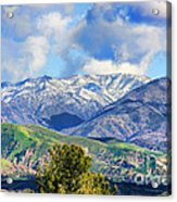 Snowing In Orange County Acrylic Print