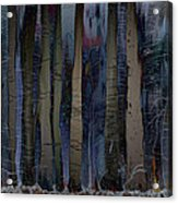 Snowing In The Ice Forest At Night Acrylic Print