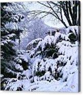 Snowmageddon 2014 Acrylic Print