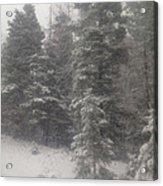 Snowscape Taos Acrylic Print