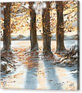 Snowscape Acrylic Print