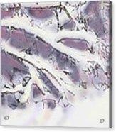 Snowtract Acrylic Print