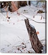 Snowy Blanket Acrylic Print