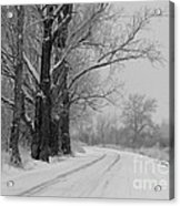 Snowy Country Road - Black And White Acrylic Print