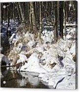 Snowy Creek Acrylic Print
