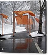 Snowy Day In Central Park Acrylic Print