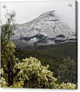Snowy Desert Mountain Acrylic Print