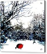 Snowy Forest At Christmas Time Acrylic Print