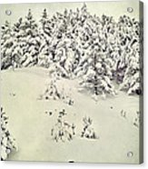 Snowy Forest Vintage Acrylic Print