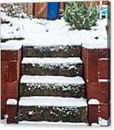 Snowy Garden Acrylic Print by Tom Gowanlock