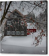 Snowy Grey And Red Acrylic Print