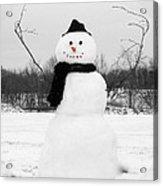 Snowy Joy Acrylic Print by Andrea Dale