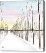 Snowy Lane Acrylic Print by Arlene Crafton