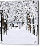Snowy Lane In Winter Park Acrylic Print