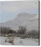 Snowy Morning Acrylic Print