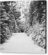 Snowy Mountain Road - Black And White Acrylic Print