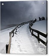Snowy Pathway Acrylic Print