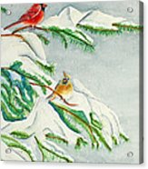Snowy Pines And Cardinals Acrylic Print