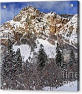 Snowy Ridge Above Bell Canyon - Wasatch Mountains - Utah Acrylic Print