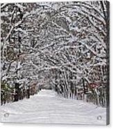 Snowy Road - 3 Acrylic Print