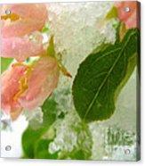 Snowy Spring 1 - Digital Painting Effect Acrylic Print